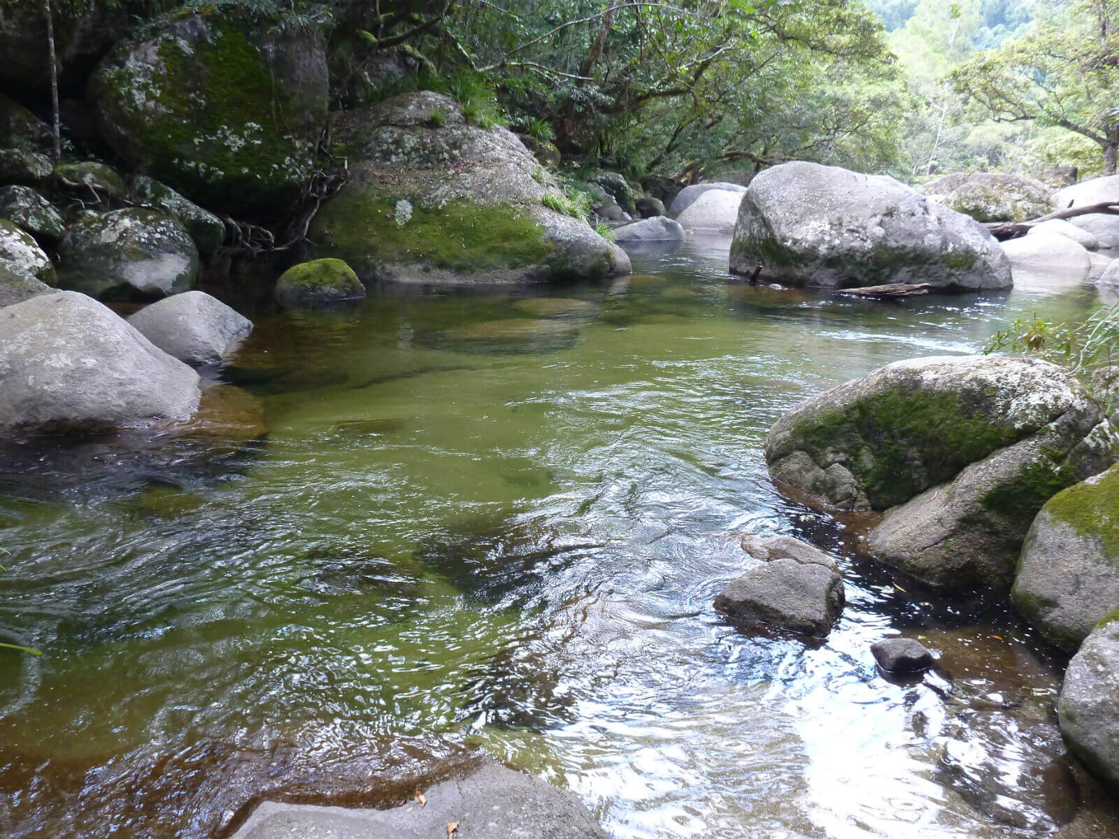 mossman gorge north queensland a travellers guide. Black Bedroom Furniture Sets. Home Design Ideas