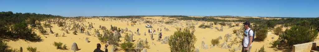 Pinnacles desert One day tour from Perth