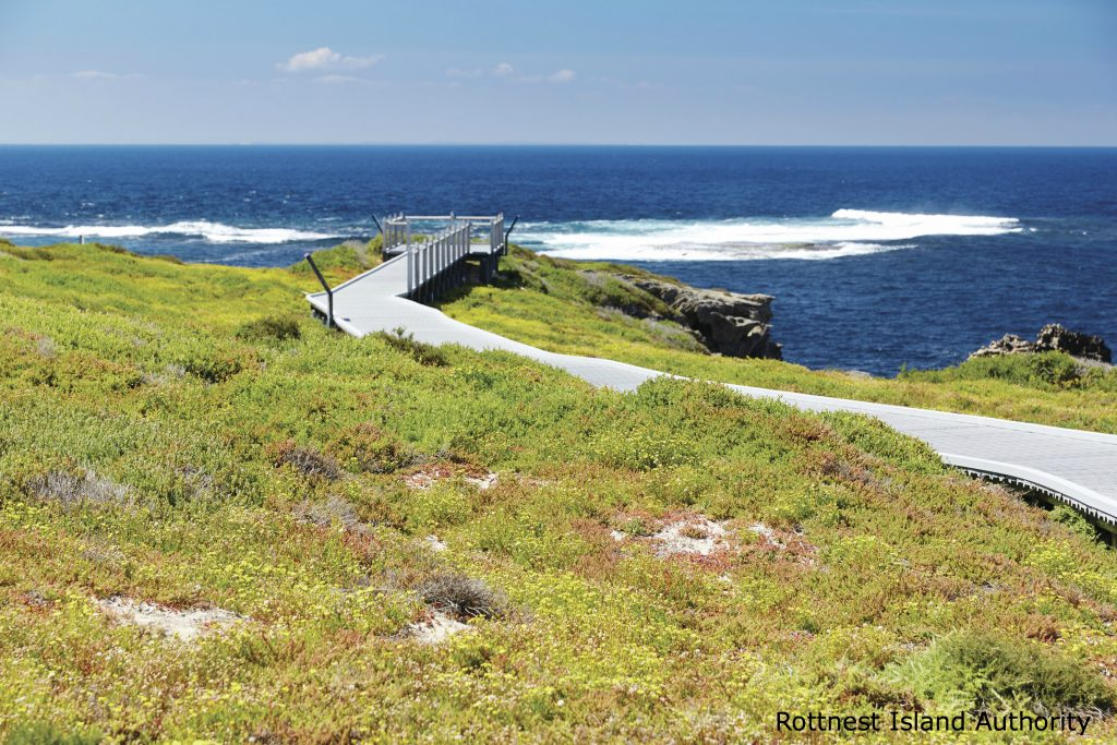 View of a walk on Rottnest Island with the sea in the background