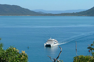 ferry arriving at Fitzroy Island