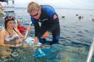 feeding fish at Marineworld pontoon