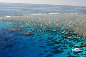 Tour Boat on edge of Great Barrier Reef