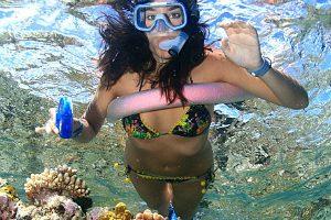 snorkeller floating over Opal reef