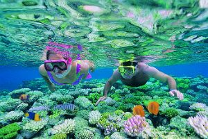 Couple snorkelling off Agincourt Reef