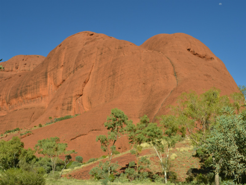 Large domes of kata tjuta