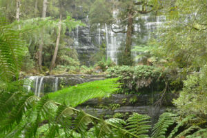 Rusell Falls in Mt Field National Park, Tasmania