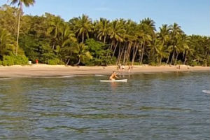 Paddleboarding at Four Mile beach near Port Douglas