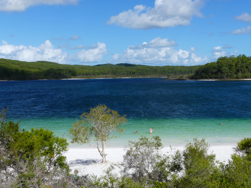 First glimpse of the different shades of the water in Lake McKenzie surrounded by white sand