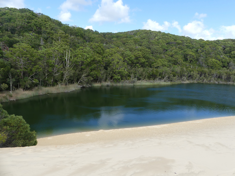 This view is the first sight of Lake Wabby as you come over the sand dunes. The green reflection of the trees in the water is amazing and what gives the lake its green colour