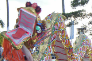 Chinese New Year Dragon dancing