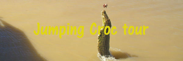 A crocodile jumping out of the water near Darwin
