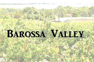 Grape Vines in the Barossa Valley